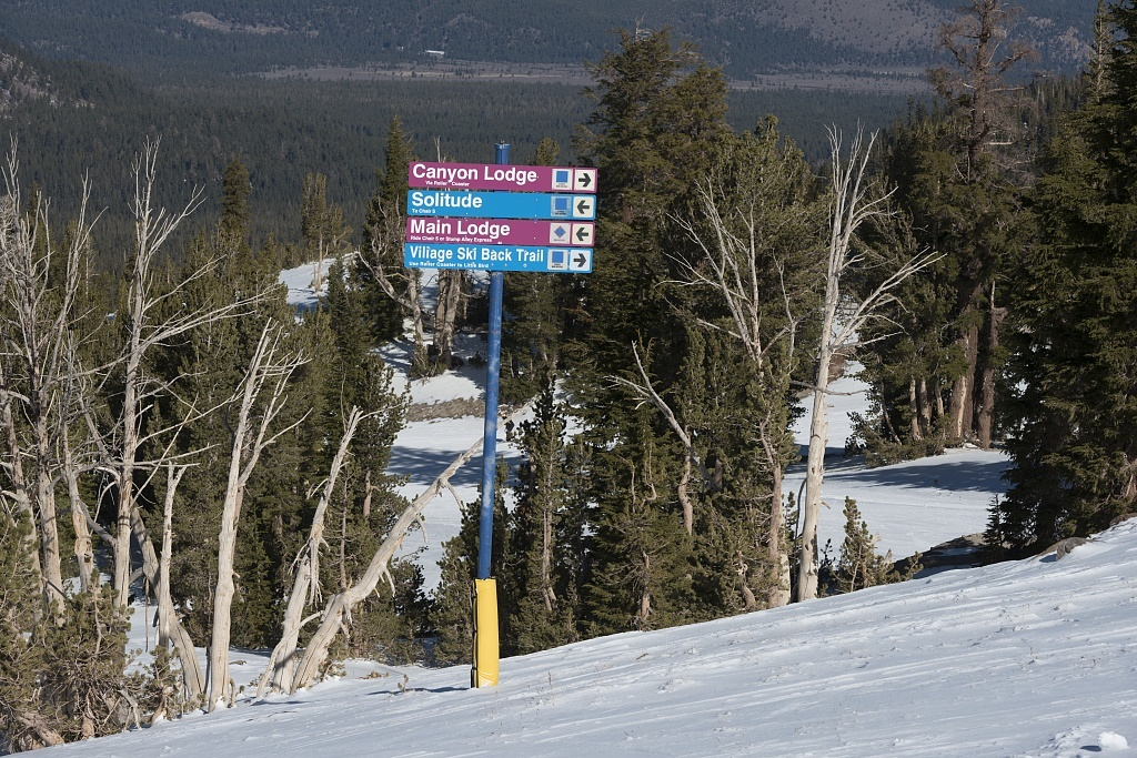 Mammoth, California, may be the ski capital of the country. Between its epic mountain passes and numerous ski lodges, the region has become a pivotal point of focus for eager travelers, investors, and sports enthusiasts.